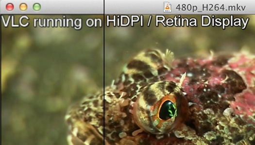 VLC Retina