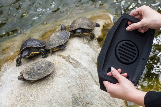 outdoortechbigturtle