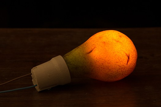 PP-Pear-light-bulb