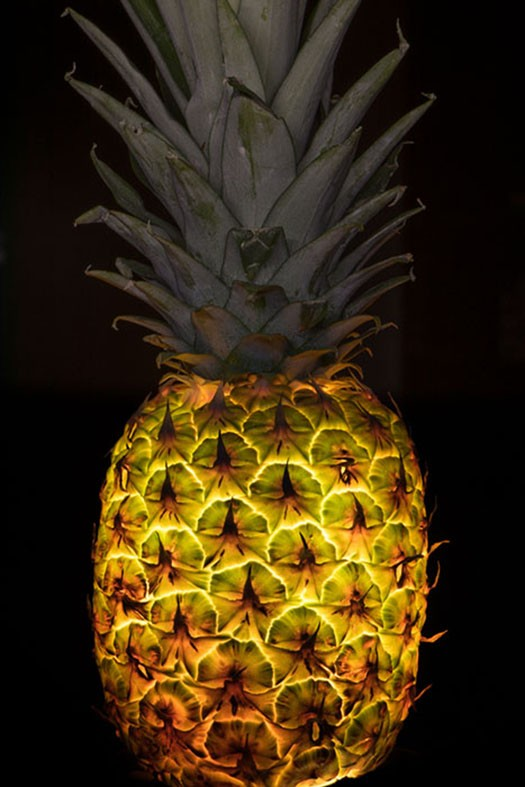 PP-Pineapple