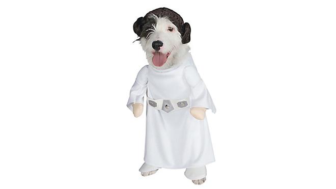 Prenses Leia köpek kostümü. Siz Star Wars seviyorsunuz diye köpeğiniz de sevmek zorunda değil.