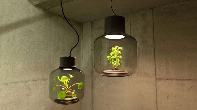Mygdal Lamp