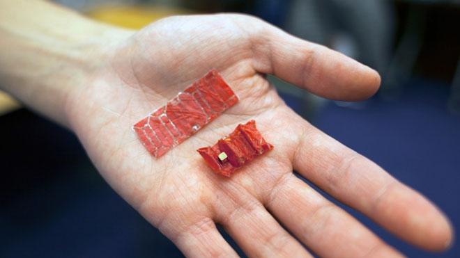 origami robot MIT