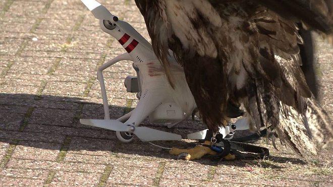 drone-kartal