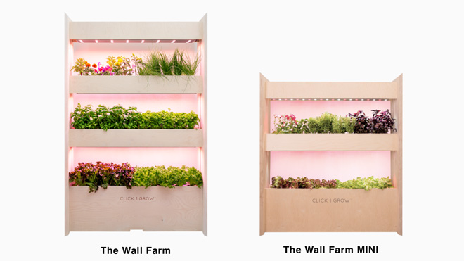 the-wall-farm