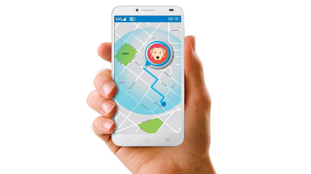 Alcatel'in Move Track