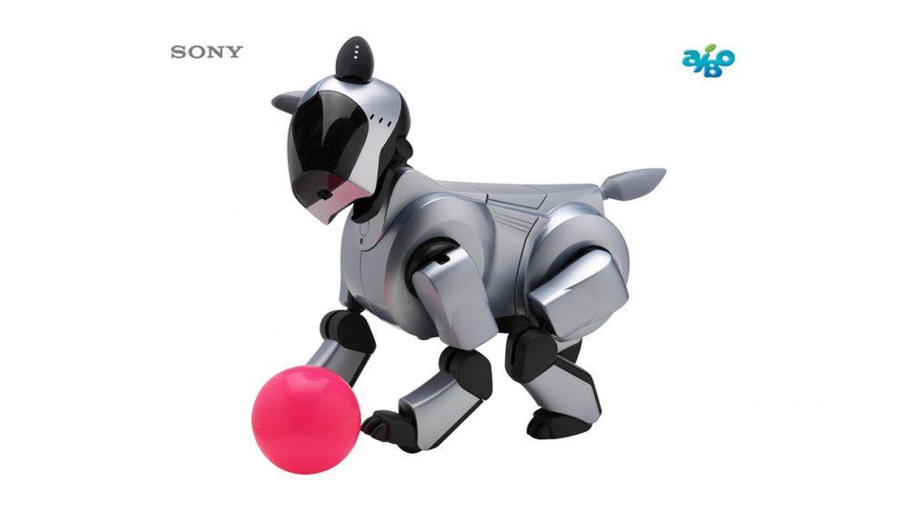 Sony akıllı robot köpek