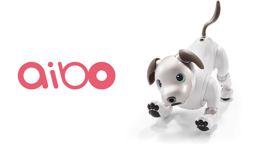 Sony Aibo robot köpek