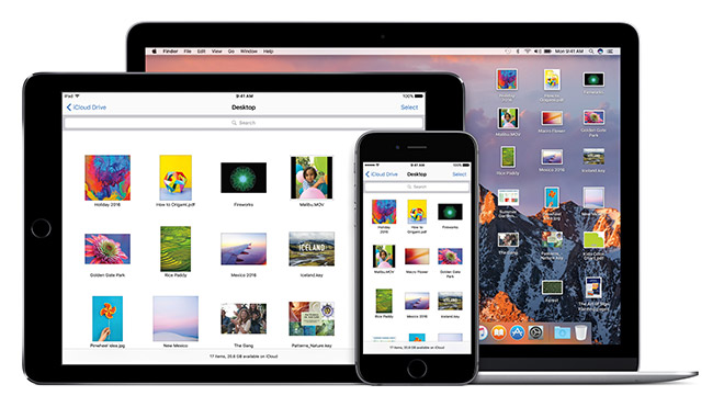 Apple iOS macOS evrensel