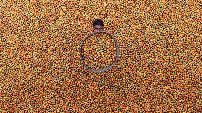 """M. Yousuf Tushar'ın """"Betel Nut"""" isimli fotoğrafı"""