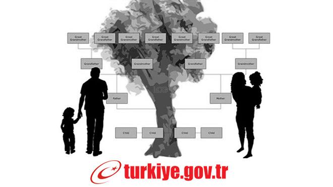 e-devlet soy ağacı sorgulama