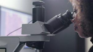 Google kanser mikroskop