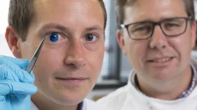 3D baskı kornea