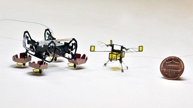 Harvard Üniversitesi HAMR mikro robot