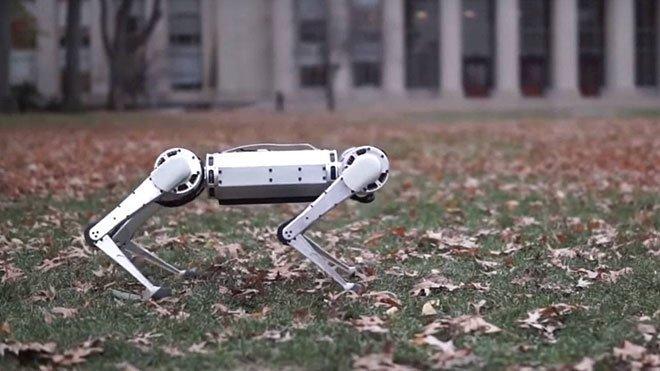 MIT Mini Cheetah