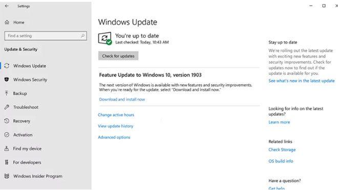 Microsoft Windows 10 güncelleme