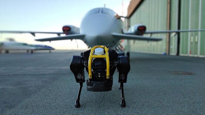 Uçak çekebilen robot HyQReal