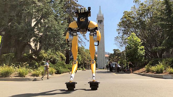 Cassie Cal robot