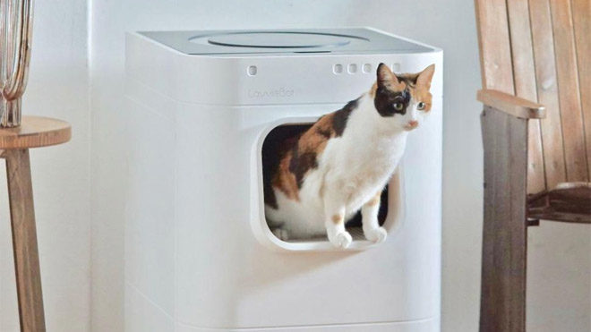 Akıllı kedi tuvaleti
