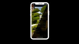 NeuralCam Night Photo iPhone