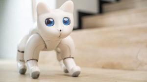 MarsCat robotik robot kedi