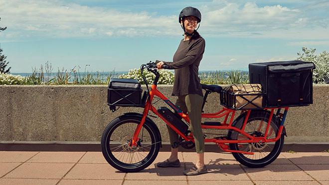 elektrikli bisiklet: RadWagon 4