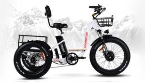 Addmotor M-340 kullanışlı bir elektrikli bisiklet