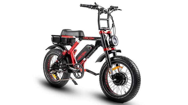 elektrikli bisiklet: Grizzly