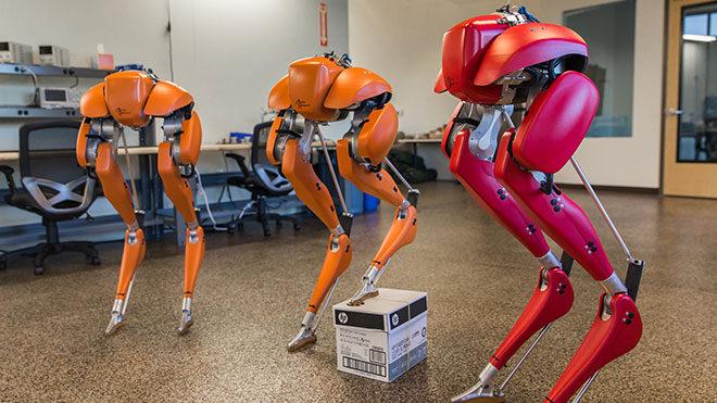 insansı robot