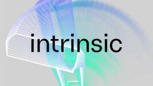 Google Intrinsic